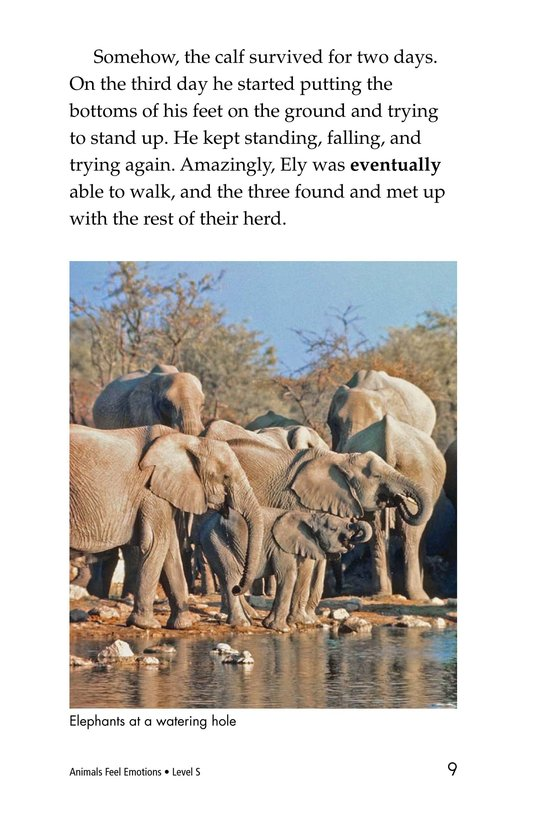 Book Preview For Animals Feel Emotions Page 9