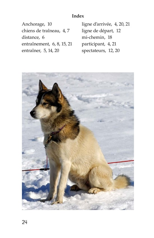 Book Preview For The Jr. Iditarod Page 24
