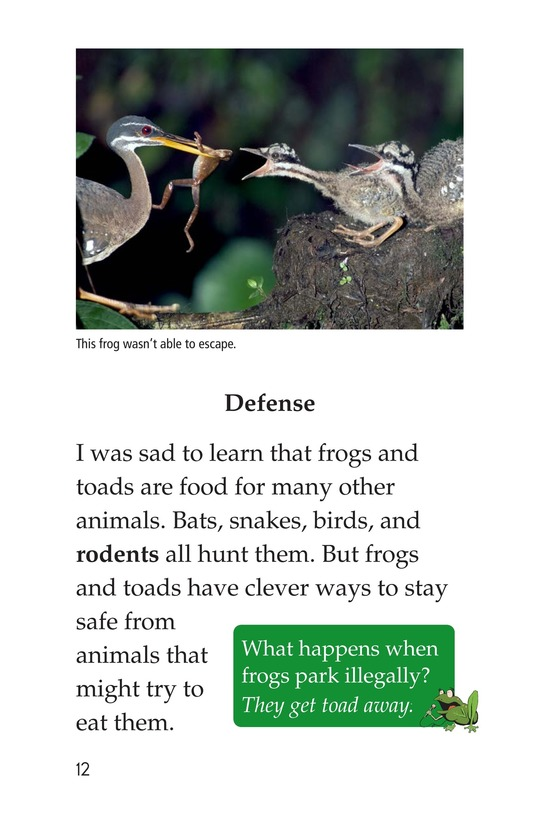 Book Preview For Frogs and Toads Page 12
