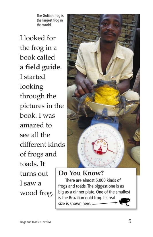 Book Preview For Frogs and Toads Page 5