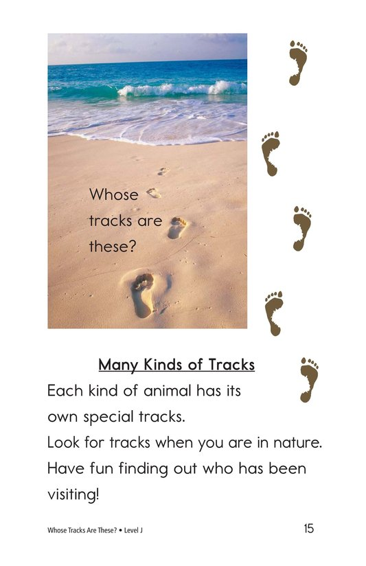 Book Preview For Whose Tracks Are These? Page 15
