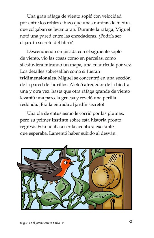 Book Preview For Miguel in the Secret Garden Page 9