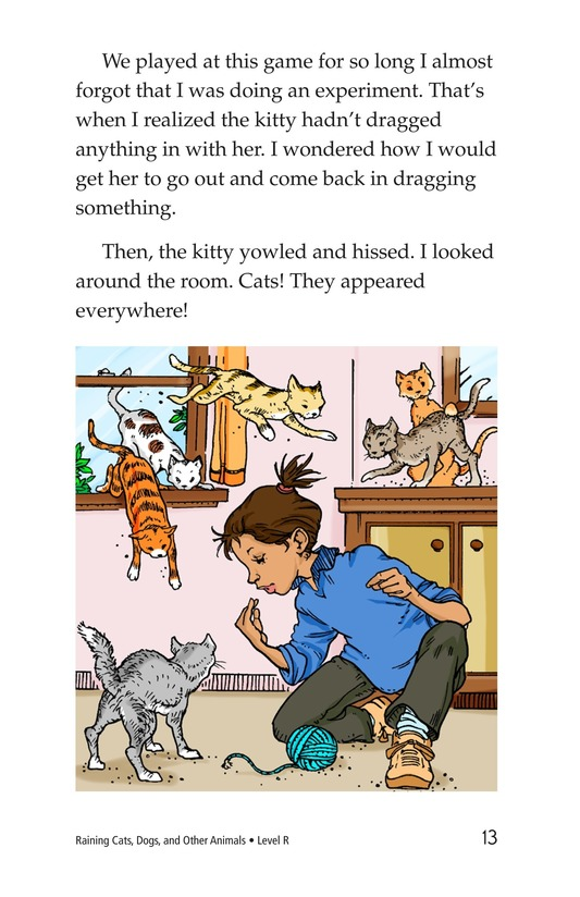 Book Preview For Book 4: Raining Cats, Dogs, and Other Animals Page 13