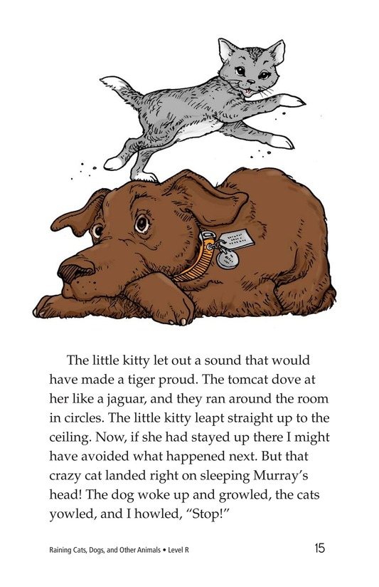 Book Preview For Book 4: Raining Cats, Dogs, and Other Animals Page 15