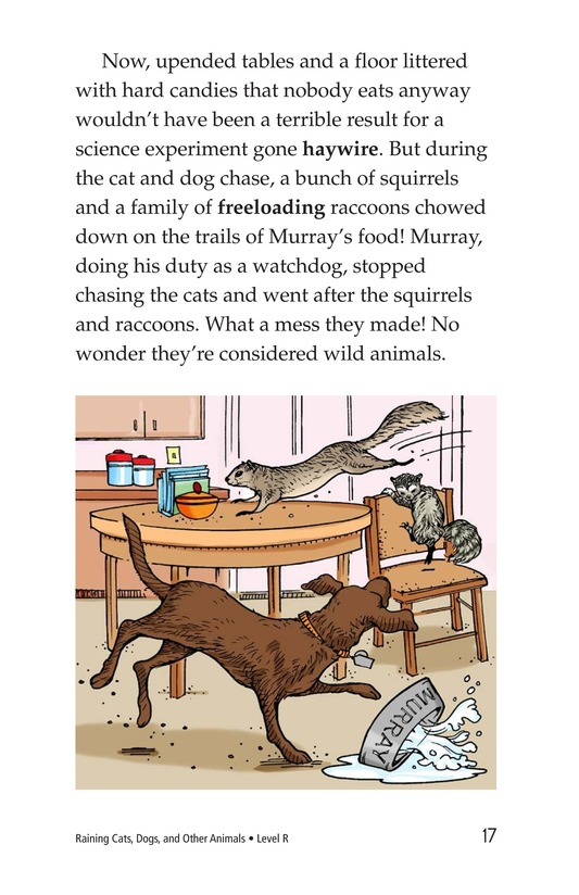Book Preview For Book 4: Raining Cats, Dogs, and Other Animals Page 17