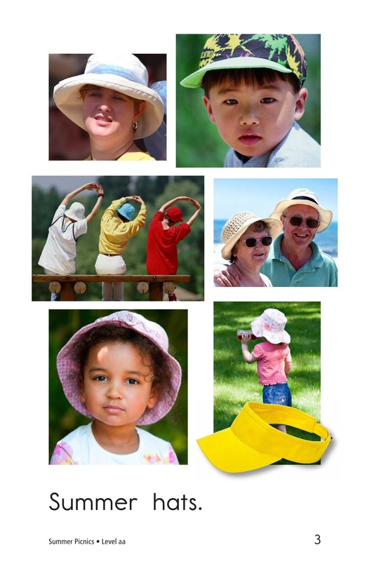 Book Preview For Summer Picnics Page 3