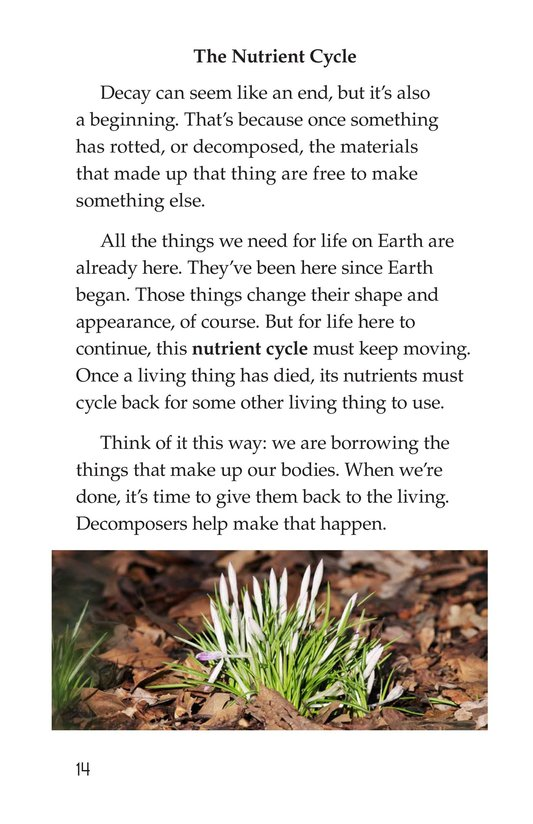 Book Preview For Nature Reuses and Recycles Page 14