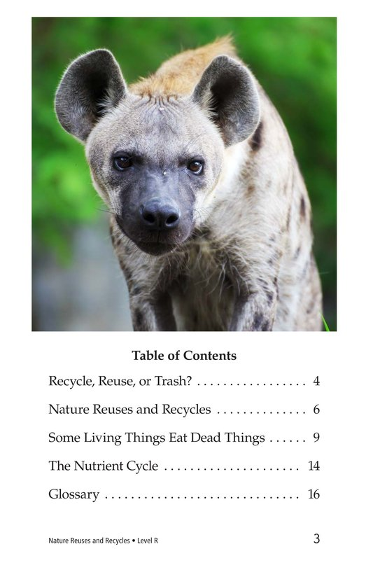 Book Preview For Nature Reuses and Recycles Page 3