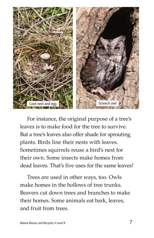 Book Preview For Nature Reuses and Recycles Page 7