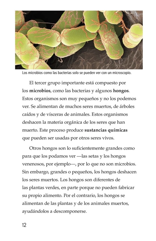 Book Preview For Nature Reuses and Recycles Page 12