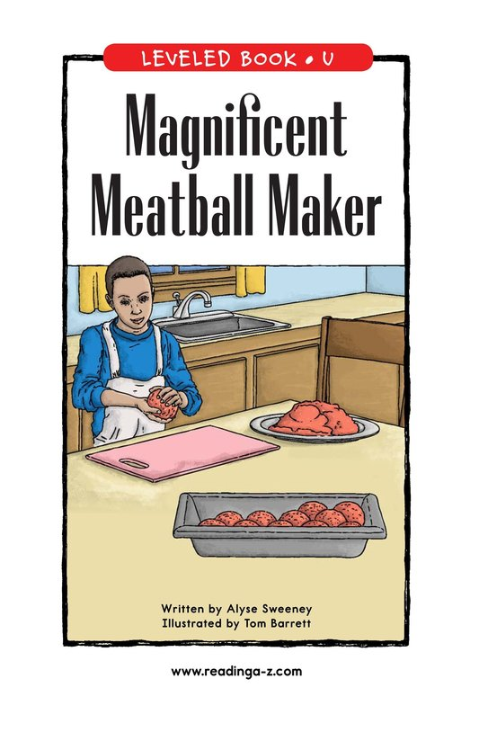 Book Preview For Magnificent Meatball Maker Page 0