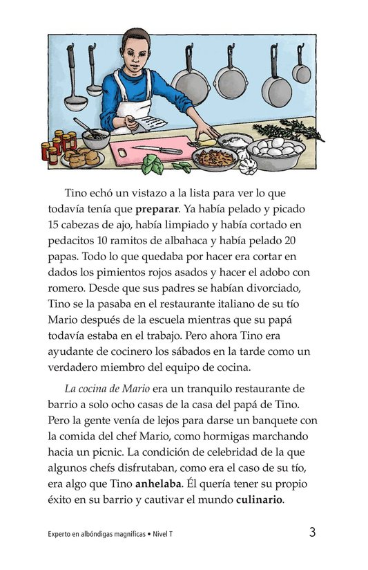 Book Preview For Magnificent Meatball Maker Page 3