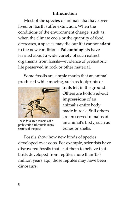 Book Preview For Early Birds: Fossils and Feathers Page 4