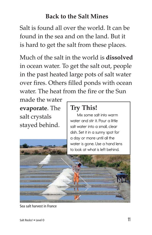 Book Preview For Salt Rocks! Page 11