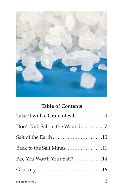 Book Preview For Salt Rocks! Page 3