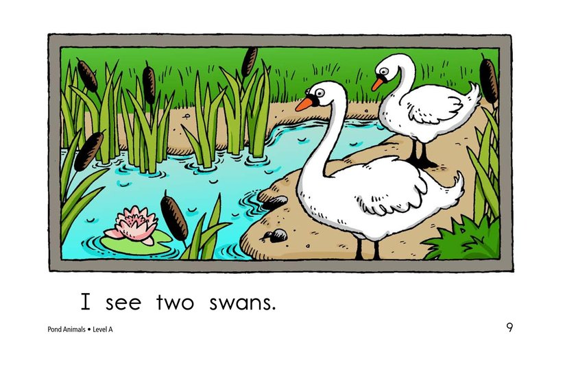 Book Preview For Pond Animals Page 9