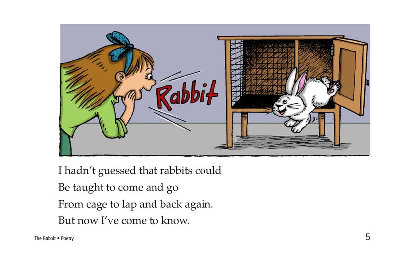 Book Preview For The Rabbit Page 5