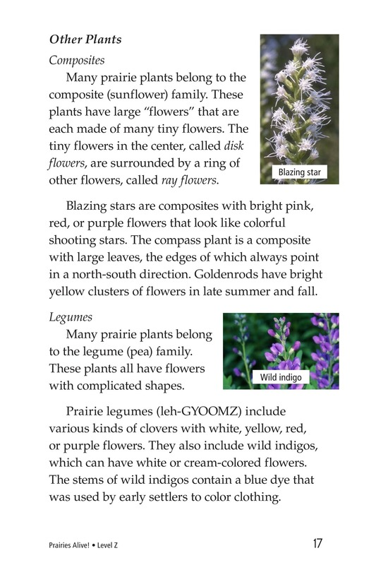 Book Preview For Prairies Alive! Page 17