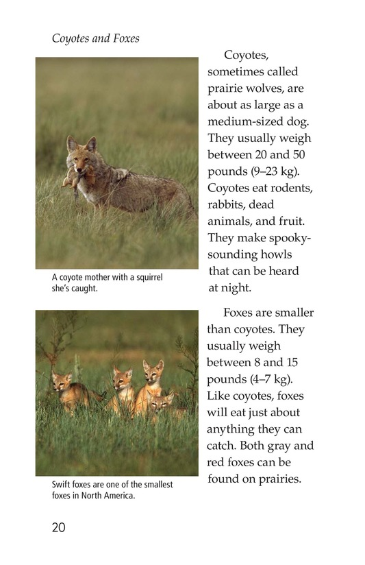 Book Preview For Prairies Alive! Page 20