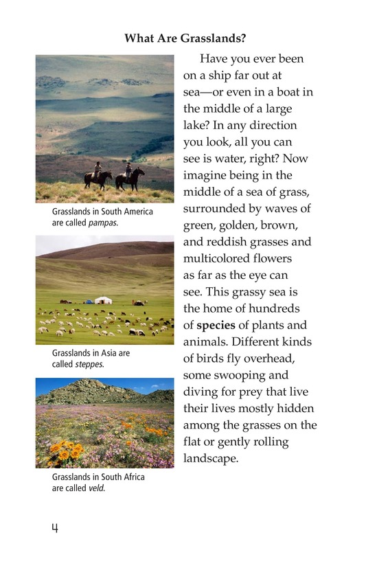 Book Preview For Prairies Alive! Page 4
