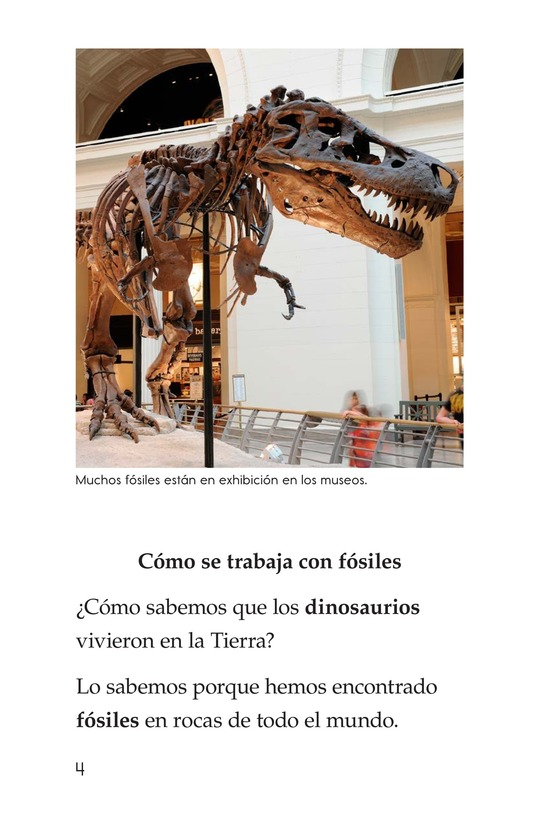 Book Preview For Discovering Dinosaurs Page 4