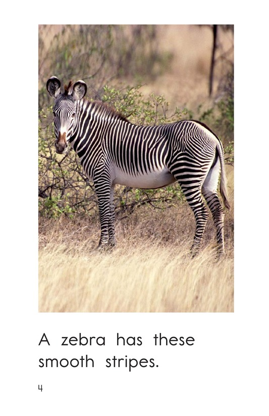 Book Preview For What Has These Stripes? Page 4