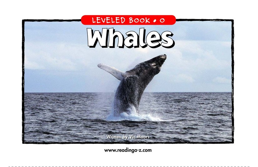 Book Preview For Whales Page 1