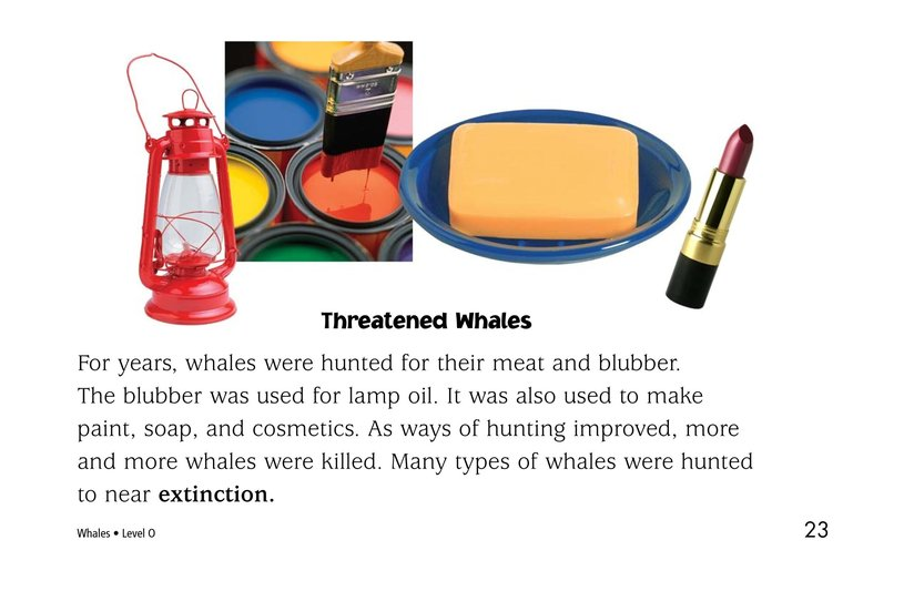 Book Preview For Whales Page 23