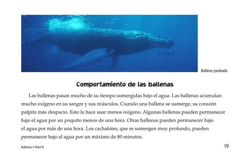 Book Preview For Whales Page 19