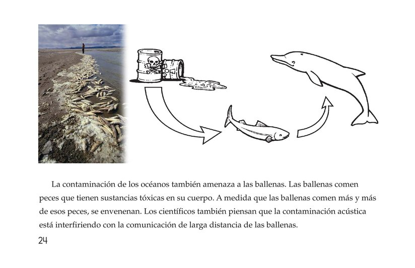 Book Preview For Whales Page 24