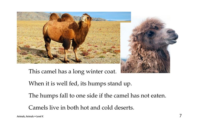 Book Preview For Animals, Animals Page 7