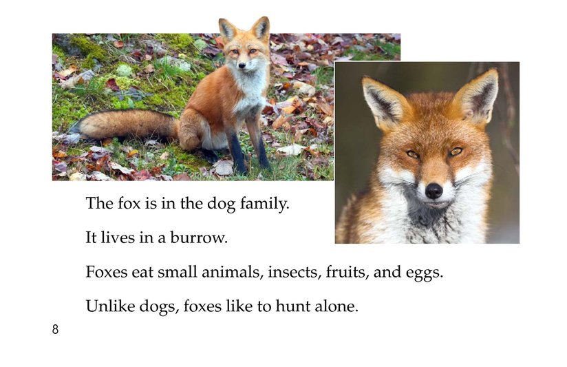 Book Preview For Animals, Animals Page 8