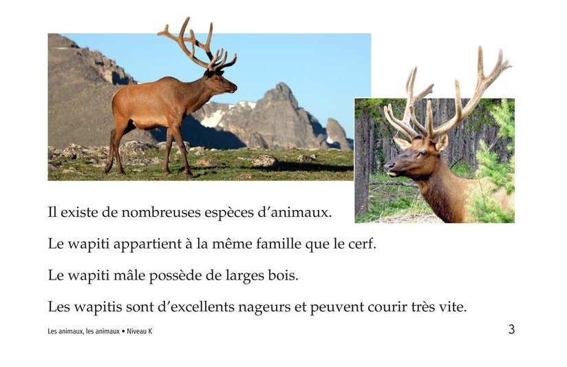 Book Preview For Animals, Animals Page 3