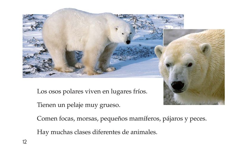 Book Preview For Animals, Animals Page 12