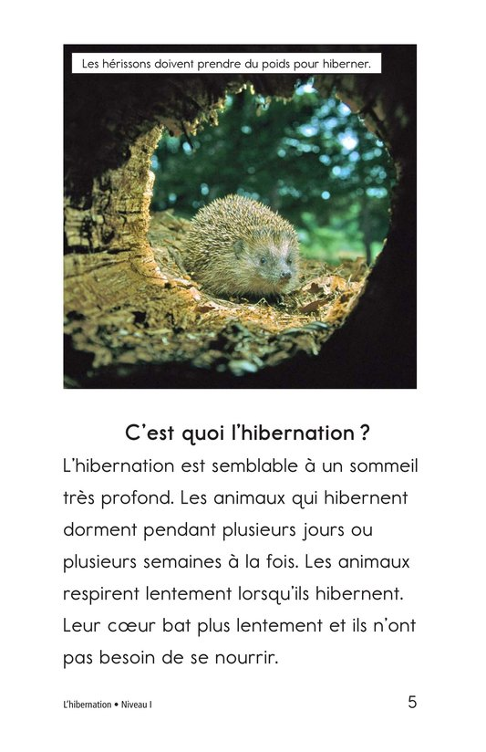 Book Preview For Hibernation Page 5