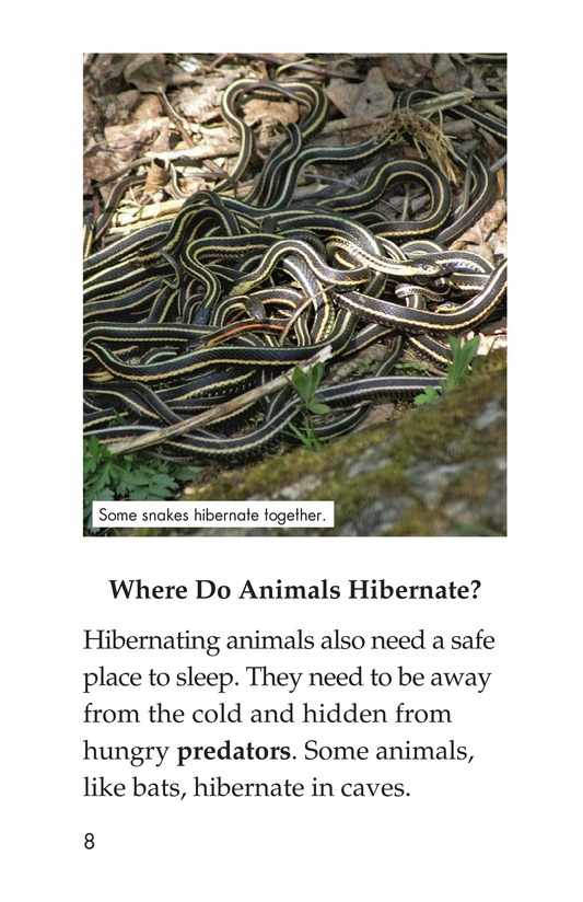 Book Preview For Hibernation Page 8