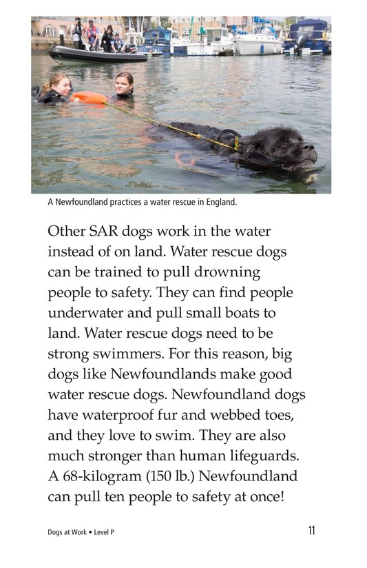 Book Preview For Dogs at Work Page 11