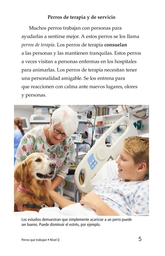 Book Preview For Dogs at Work Page 5