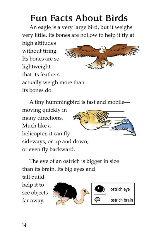 Book Preview For Extreme Animals Page 14