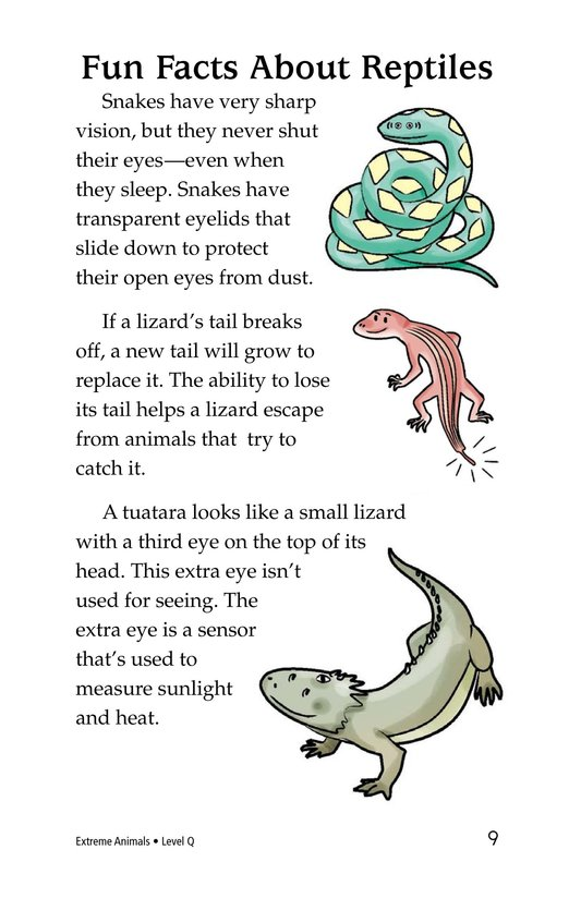 Book Preview For Extreme Animals Page 9