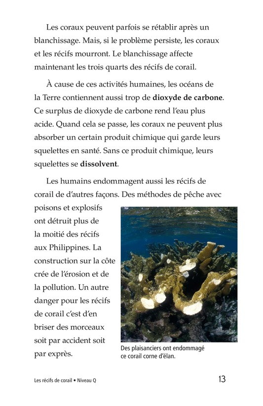 Book Preview For Coral Reefs Page 13
