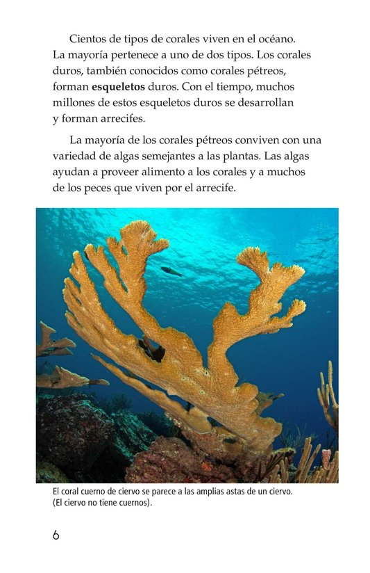 Book Preview For Coral Reefs Page 6