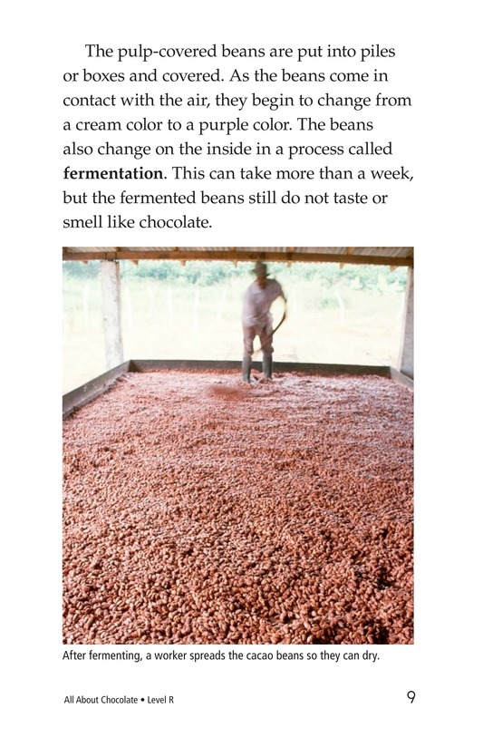 Book Preview For All About Chocolate Page 9
