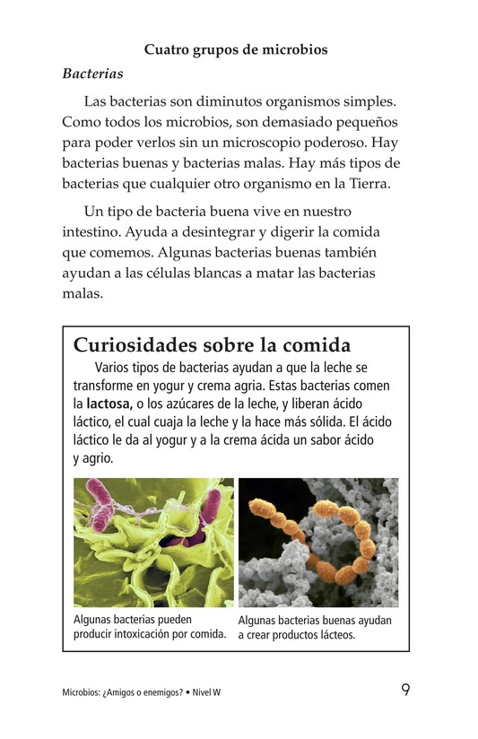 Book Preview For Microbes: Friend or Foe? Page 9
