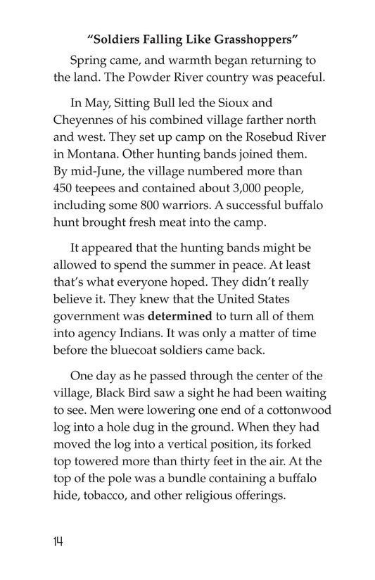Book Preview For The Cheyennes Page 14