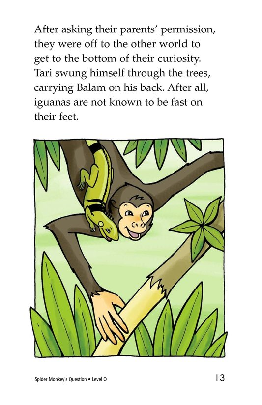 Book Preview For Spider Monkey's Question Page 13