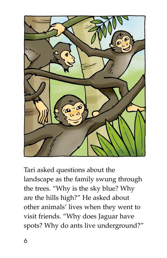Book Preview For Spider Monkey's Question Page 6