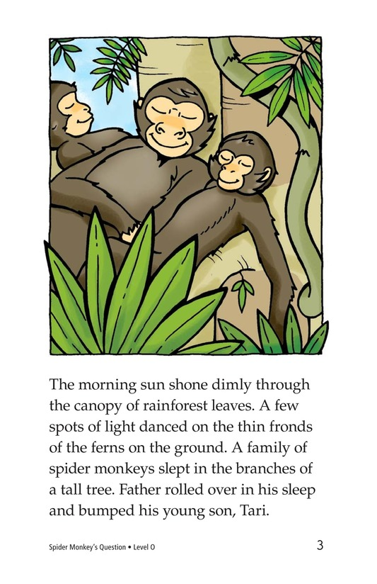 Book Preview For Spider Monkey's Question Page 3