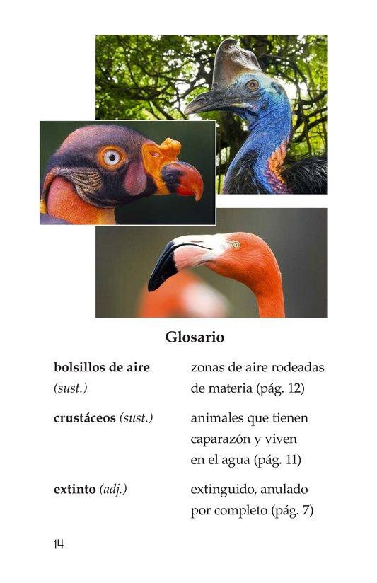 Book Preview For Weird Bird Beaks Page 14