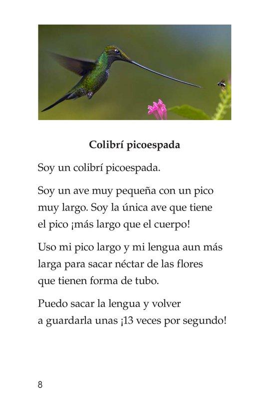 Book Preview For Weird Bird Beaks Page 8